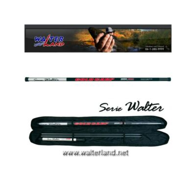 SERIE WALTER GOLD CARP 3-AS TAG